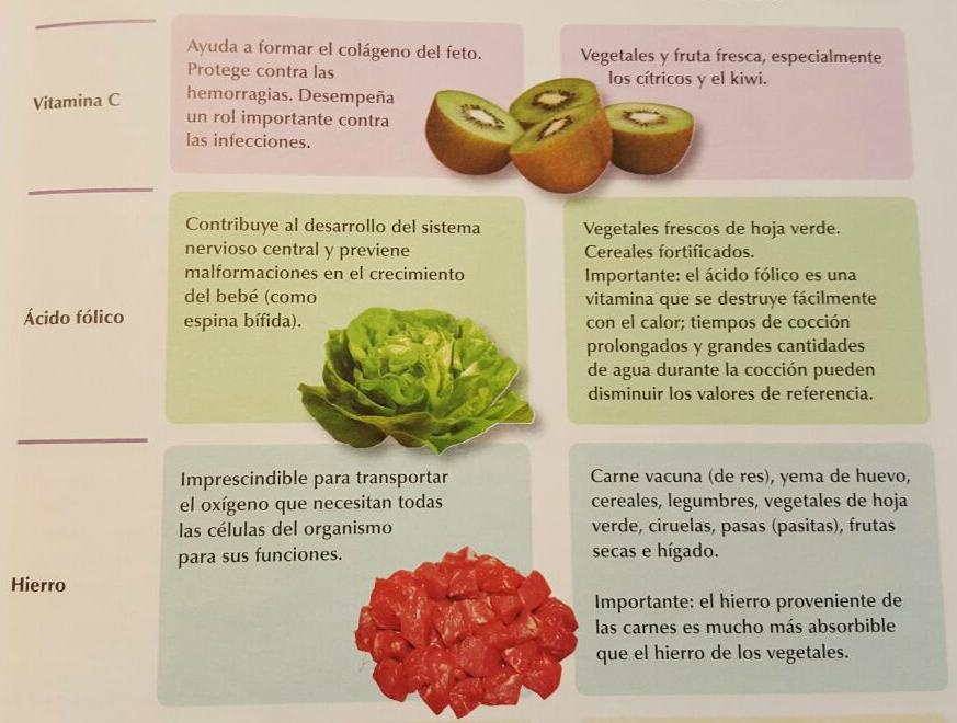 La alimentaci n en el embarazo pancita de colores - Alimentos buenos en el embarazo ...